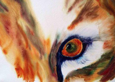 claire bauger coloriste aquarelle animaux oeil renard