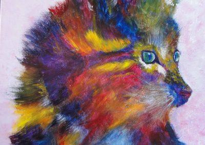 chat coloré  46 x 55