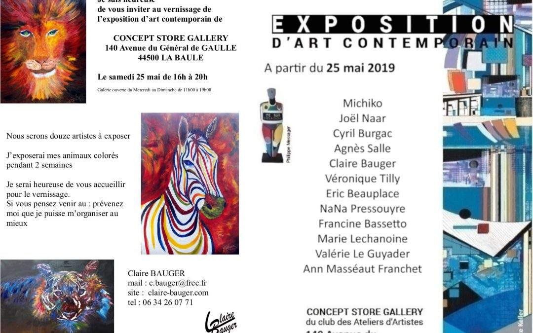 Claire Bauger INVITATION VERNISSAGE D'ART CONTEMPORAIN A LA BAULE