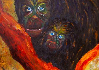 chimpanzes claire bauger